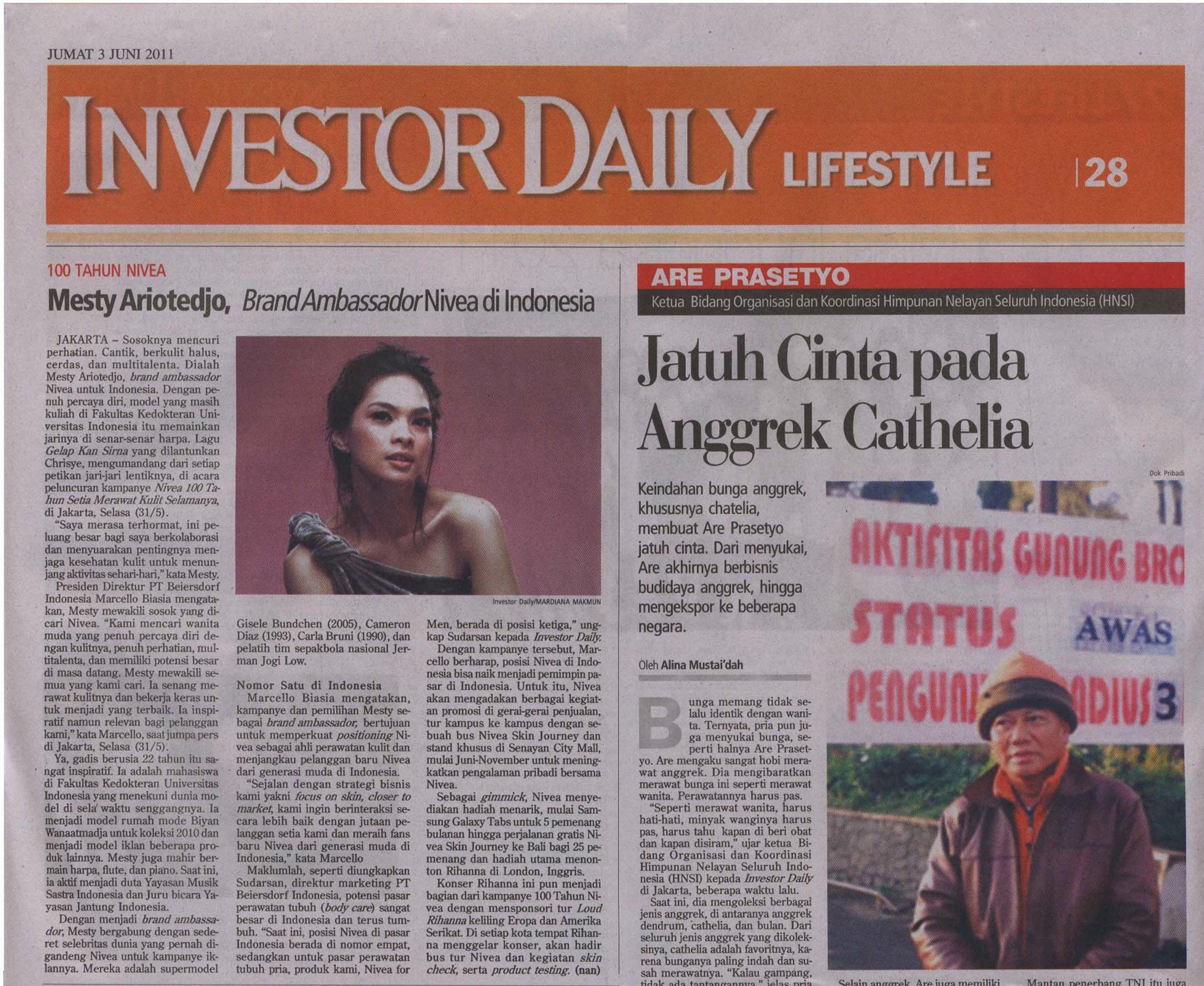 Investor Daily - Nivea 1