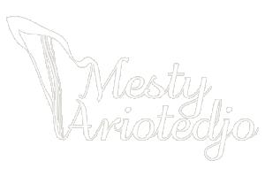 Mesty Ariotedjo